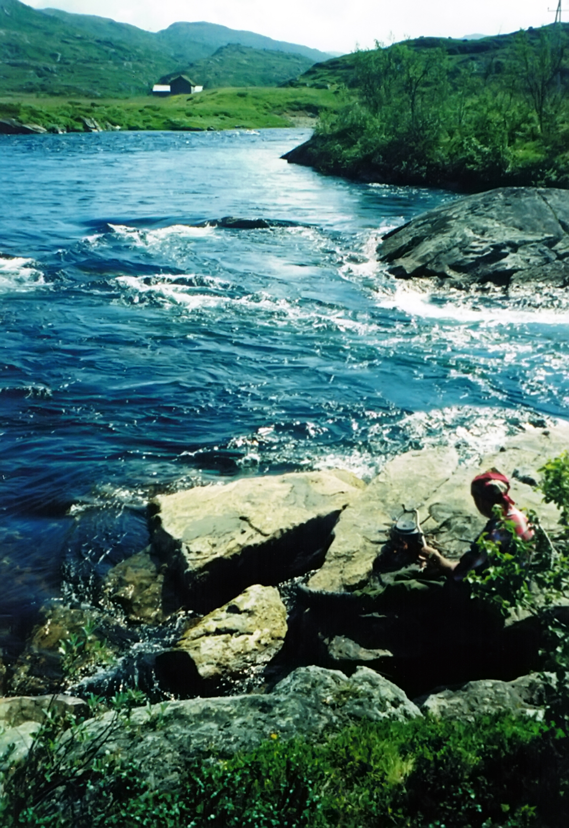 Hardangervidda 2004